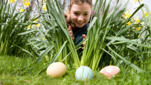 Easter Egg Hunt/Magic Show @ Gowanda Free Library